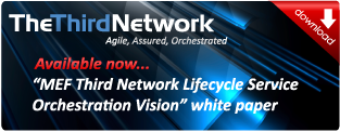 The Third Network LSO White Paper